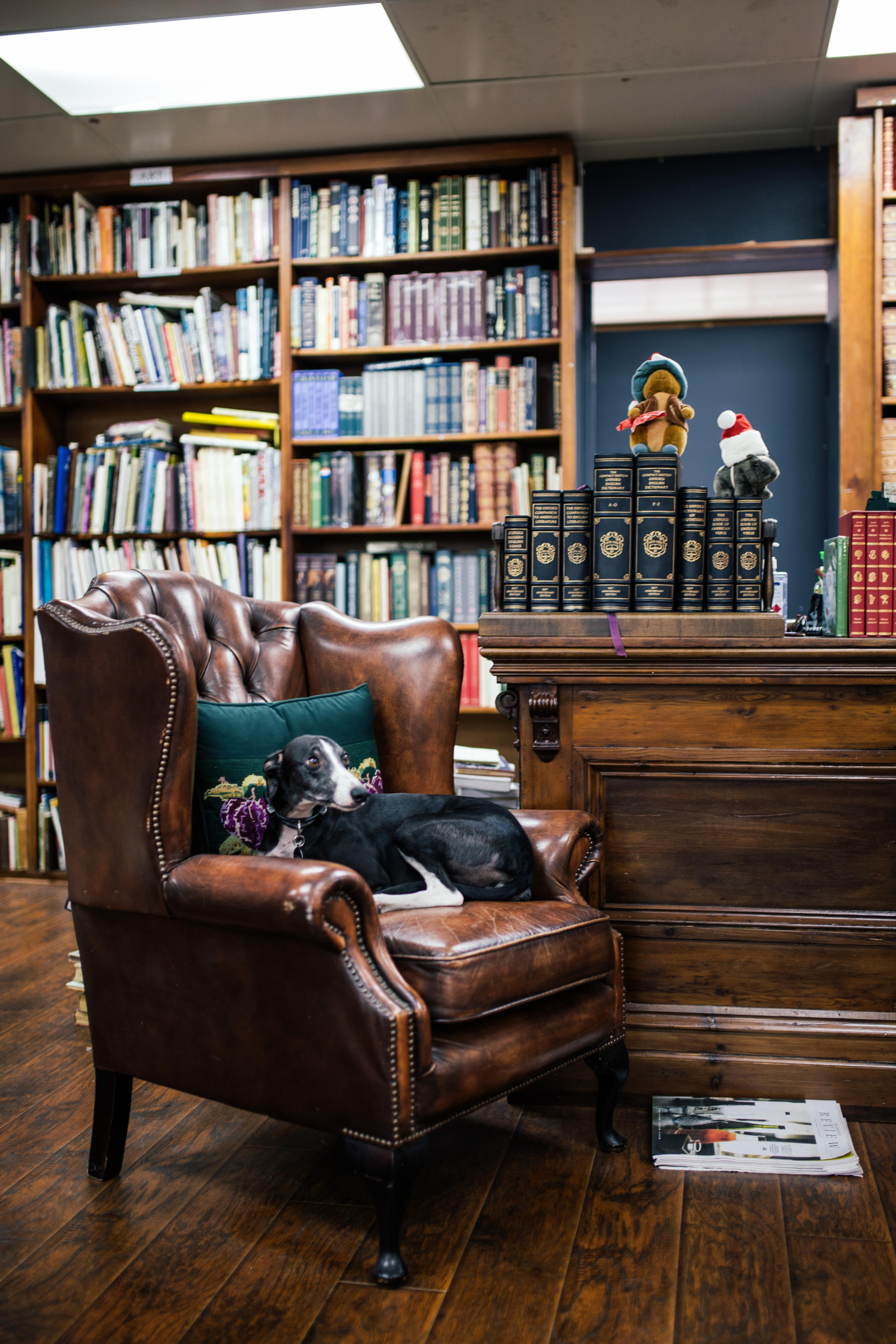 TEO Magazine-O'connell's Bookshop-Adelaide-Blog